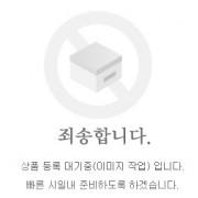 메가젯(HB125) 발판(뒤) LH/RH