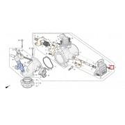 SV250(Q3) 스롯틀 바디(단품) 1620A-SZ2-000